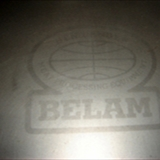 Belam meat injector (7)